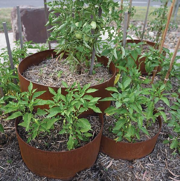 580 three teired planter