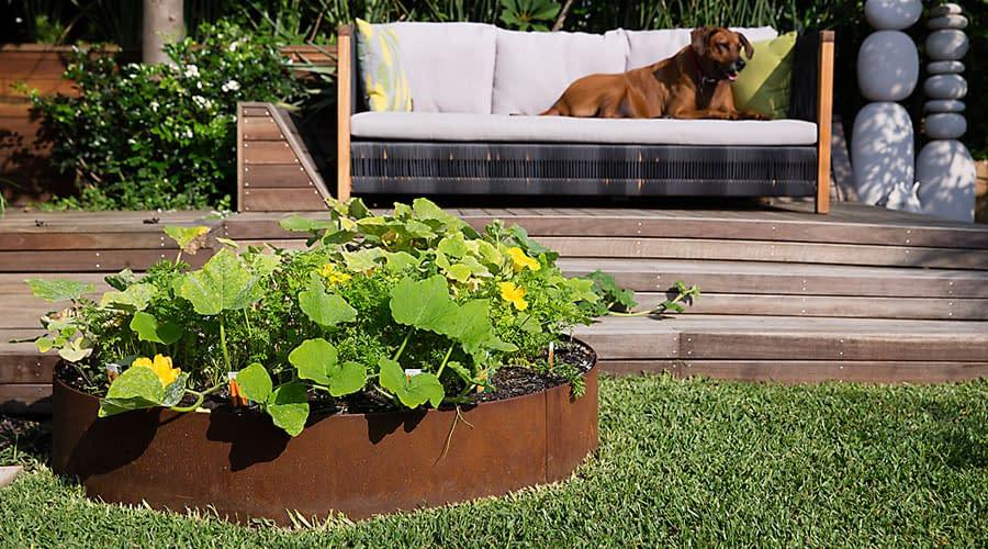 pre-made-circles_0_steel-garden-rings-jamie-duries-personal-backyard-5